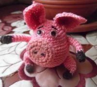 к году Свиньи